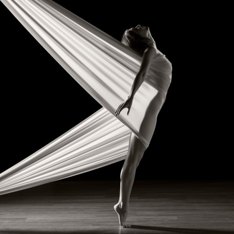 Roy_Whiddon_Captive Dancer_2016_photography_30x24x1_$400