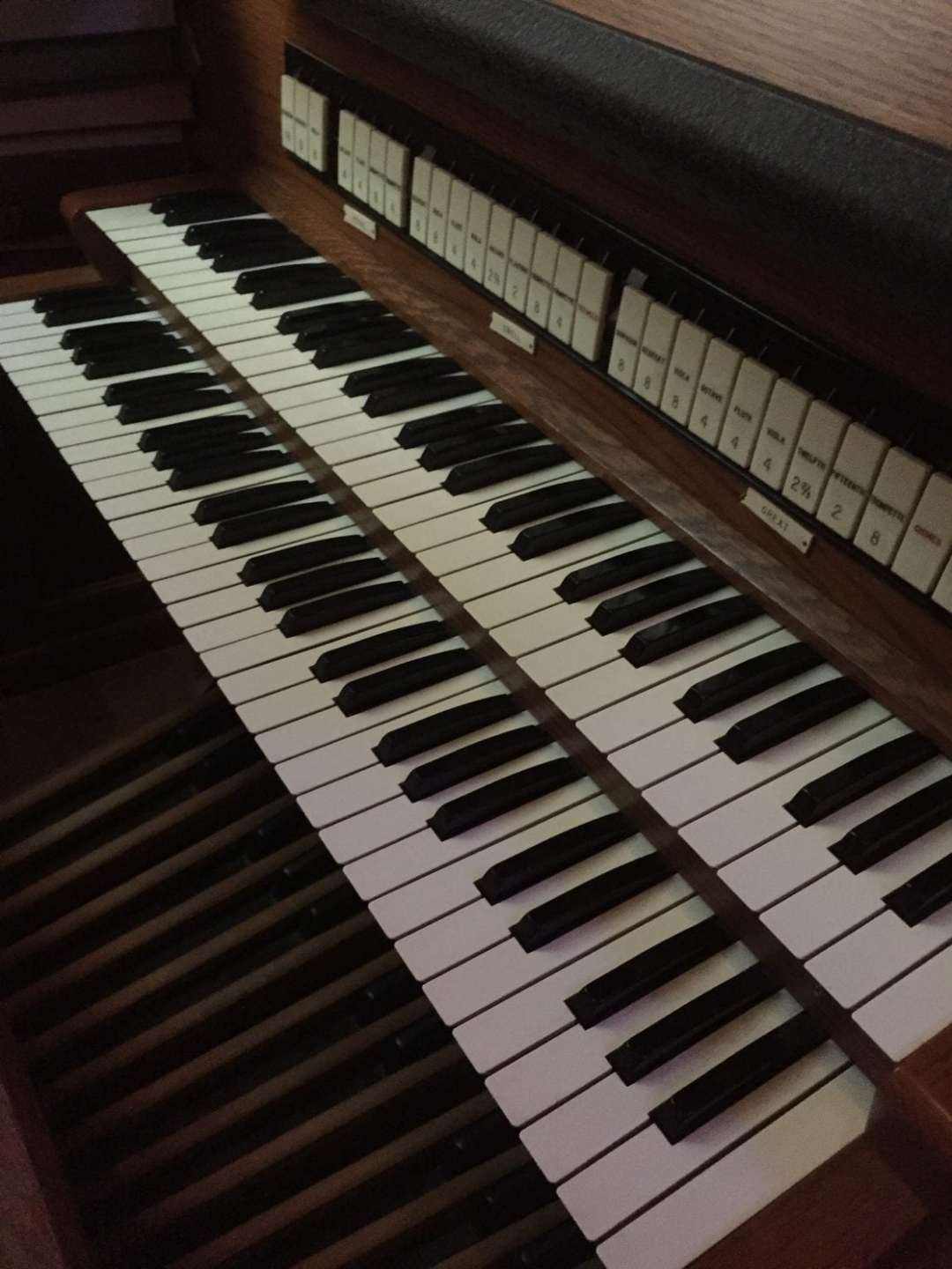 TN organ keys