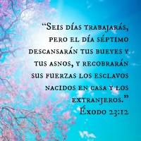 2.14 Spanish