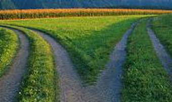 discernment-roadfork