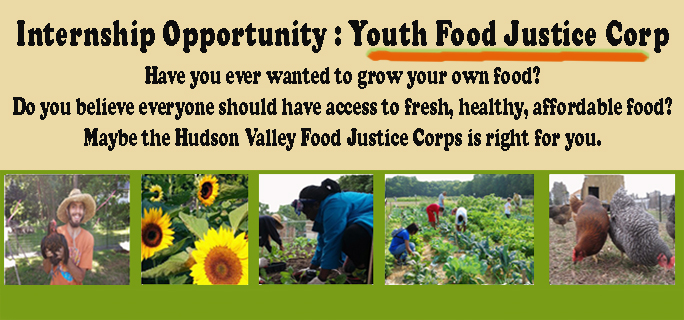 Youth Food Justice POST