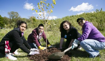 Kleb Woods Volunteer Opportunity | Citizens Environmental Coalition