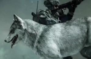 """CoD ゴースト ガード・ドッグ用のスキン""""The Wolf""""が公式発表"""