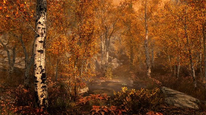 Skyrim Fall Forest