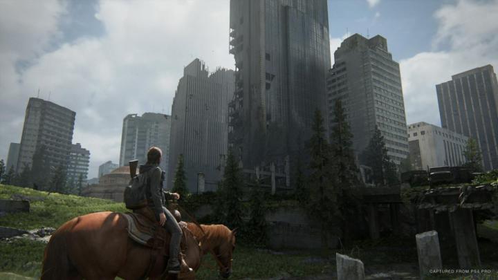 ラスアス2 The Last of Us Part 2(ラスト オブ アス パート2)