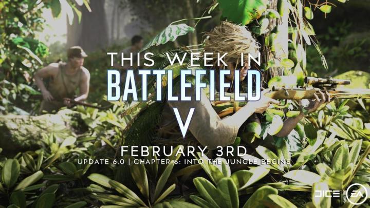 BFV:「今週のBFV」2020年第5号 サムネイル