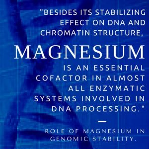 Magnesium is required in almost all enzymatic reactions involved in DNA processing