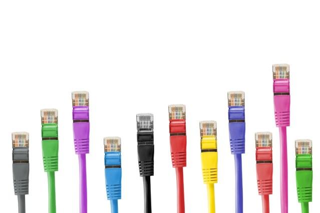 Image représentant des câbles de connexion à un réseau informatique