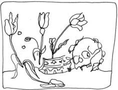 Vanity Rachel Ruysch dessin