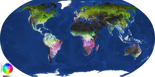 Carte globale de la couverture végétale globale générée par l'outil LandMonitoring.Earth de GeoVille à partir des images du satellite d'observation de la Terre Sentinel-2 de l'ESA, prises entre 2016 et 2018. Cercle chromatique : saison, plus précisément mois, correspondant au pic (maximum) de végétation (couleurs) et densité de la végétation (transparent pour les prairies, opaque pour les forêts). Niveau de gris : échelle de la biomasse, avec les zones les plus riches en biomasses en blanc et les plus pauvres en noir. © Modified Copernicus Sentinel data (2016–2018), processed by GeoVille