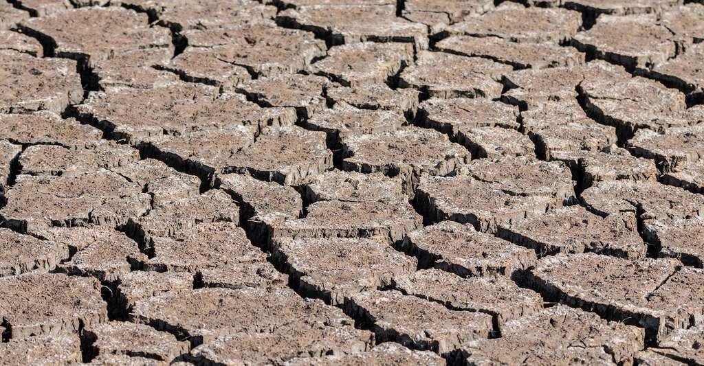 Lorsque les sols sont secs, ils se craquellent. La peau, elle, perd d'abord en élasticité. © Felix_Broennimann, Pixabay, CC0 Creative Commons