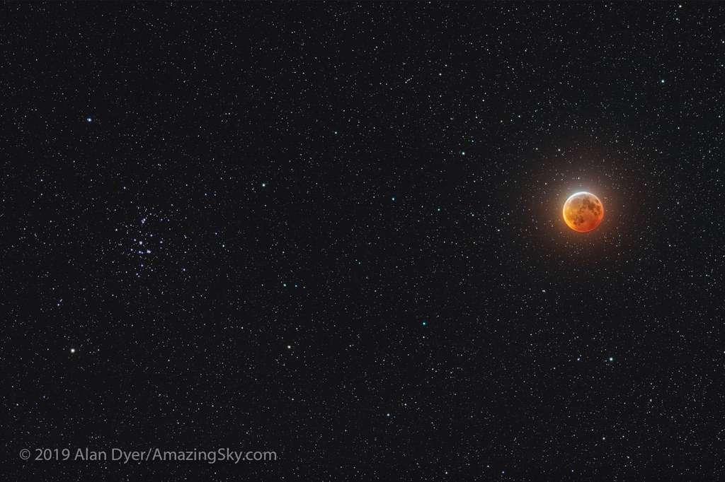 Lune rousse en rapprochement de la Ruche, le bel amas de jeunes étoiles Messier 44 visible à gauche. © Alan Dyer