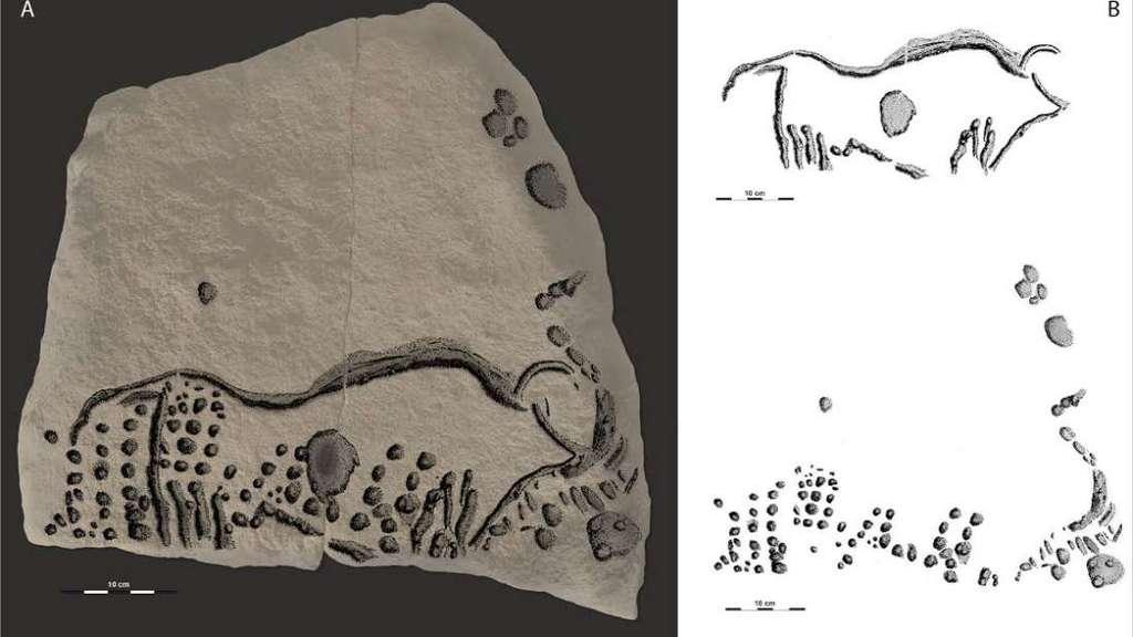 Un dessin d'auroch et son interprétation. © Raphaëlle Bourrillon