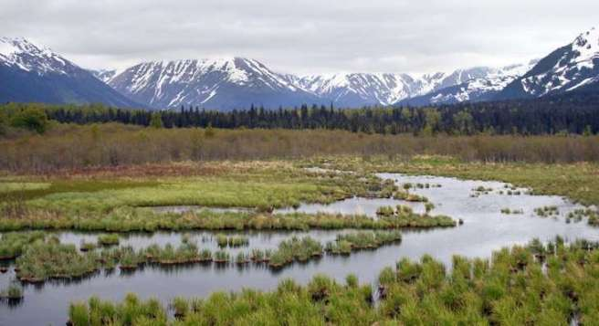 Le pergélisol (ou permafrost) est un sol gelé sur une grande épaisseur qui peut fondre en surface durant l'été. La matière organique qu'il contient se décompose alors et le carbone s'échappe sous forme de CO2 (gaz carbonique). Il est également soumis à l'érosion, laquelle augmente quand le climat se réchauffe. © Soil Science, Flickr, CC by 2.0