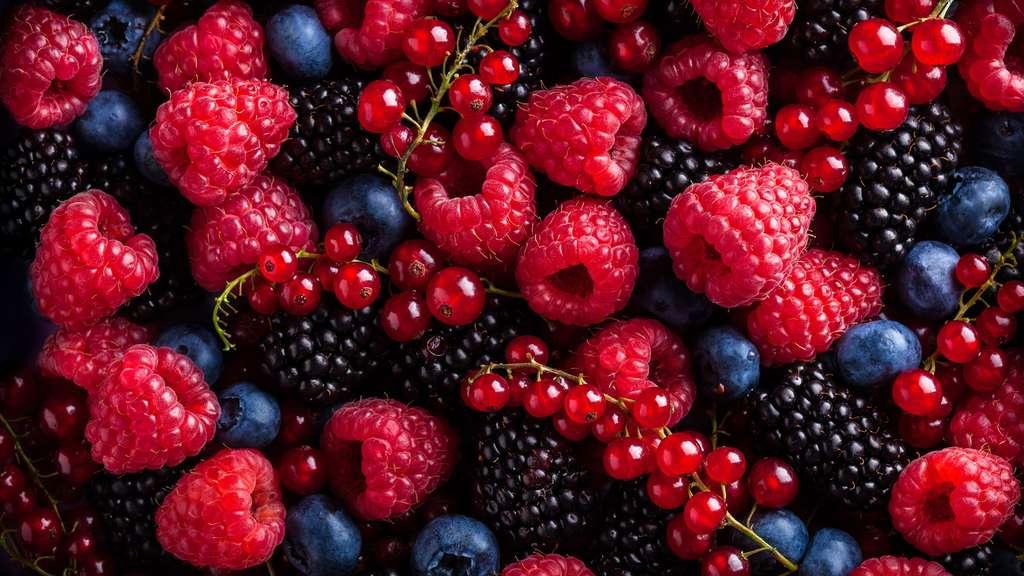Livre sur les petits fruits rouges  Dossier