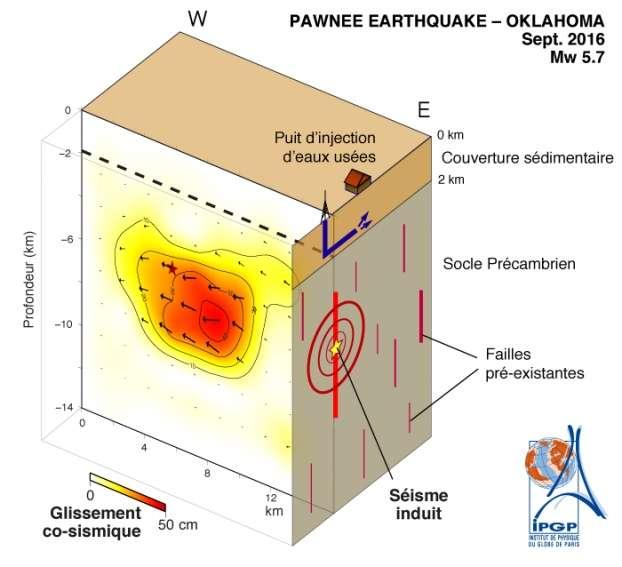 Glissement associé au séisme de Pawnee, visualisé sous la forme d'un bloc 3D. Le séisme a rompu une faille située à l'intérieur du socle cristallin, sous le contact avec la couverture sédimentaire (ligne pointillée) à l'intérieur de laquelle l'injection de fluides a lieu. © IPGP, Insu, CNRS
