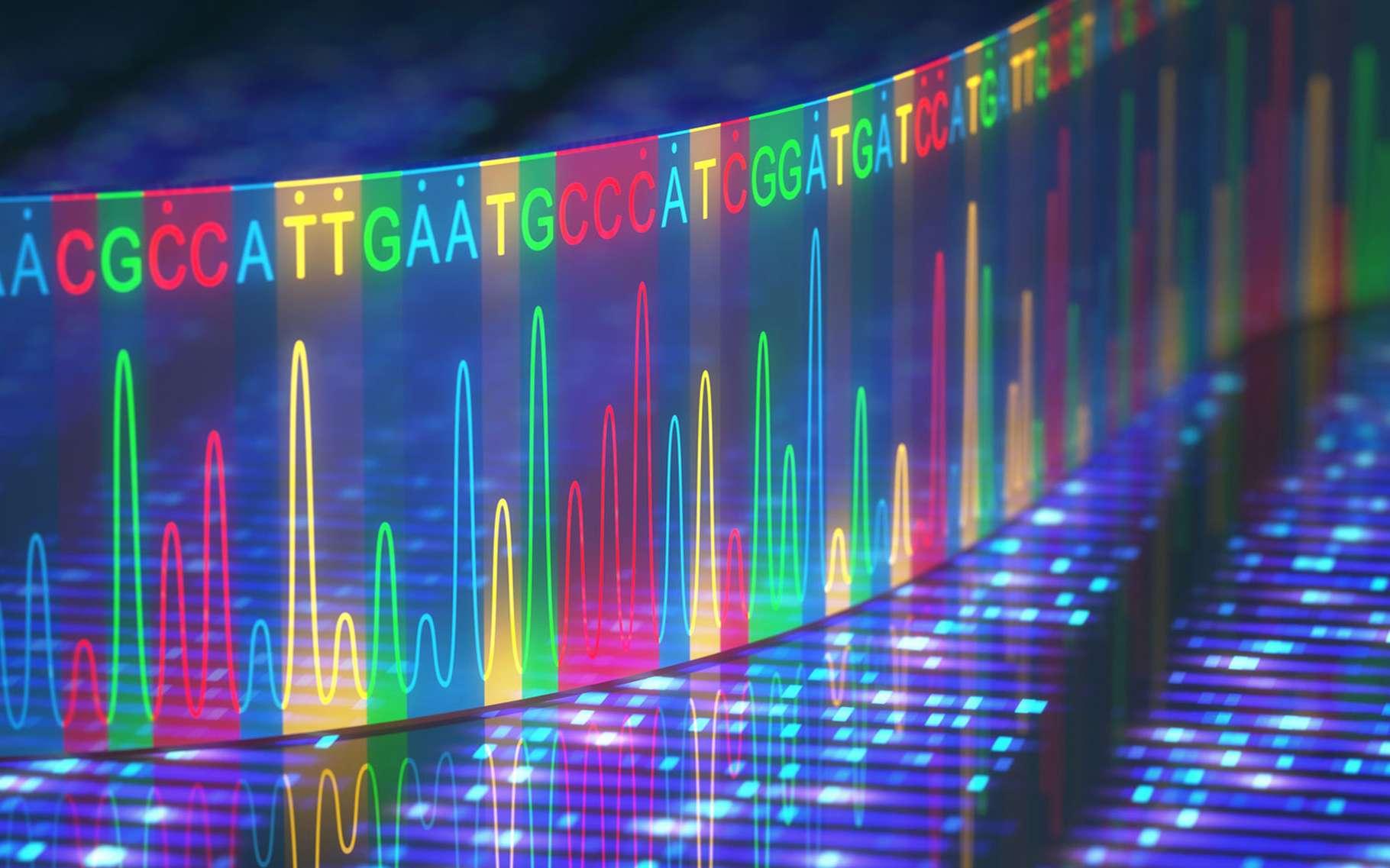 Empreinte Genetique L Adn
