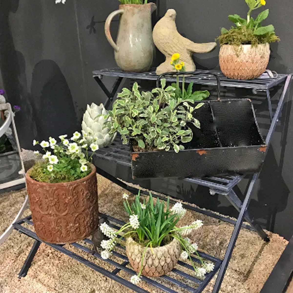 etagere a plantes 3 marches en fer anthracite vente au meilleur prix jardins animes