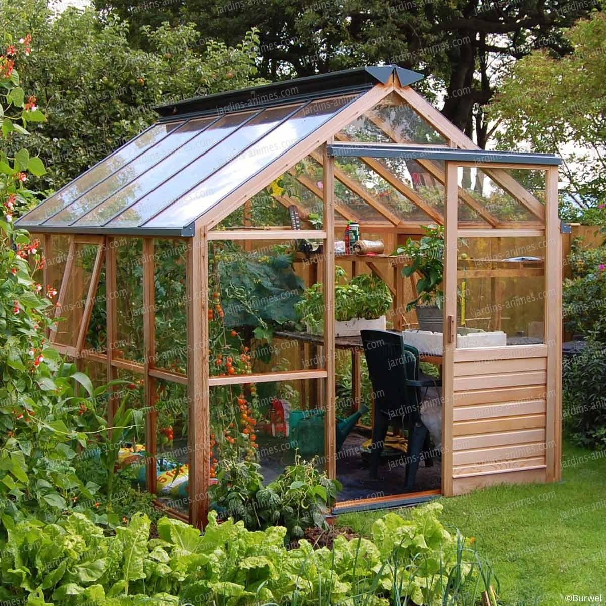 Serre de jardin en bois Classic Height Gabriel Ash  Serre Jardin