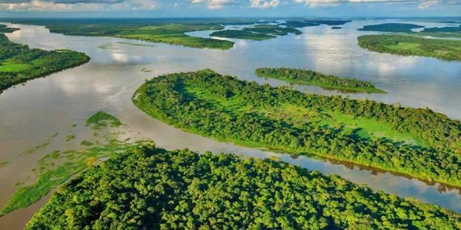 Fleuve Congo - L'Or vert de RDC