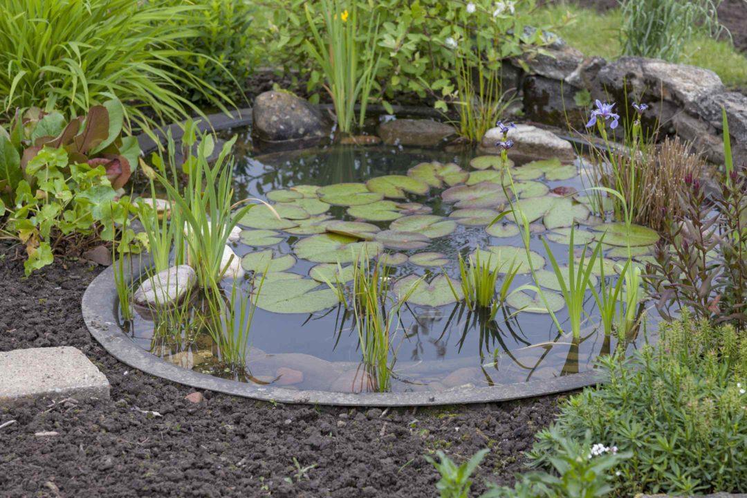 bassin de jardin preforme en beton