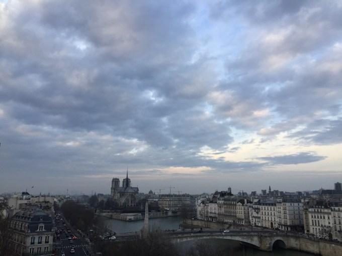 Notre Dame de Paris depuis l'IMA