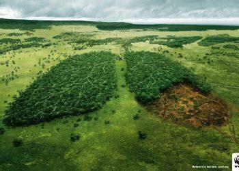 France: Des élus veulent mettre la pub au service de l'écologie