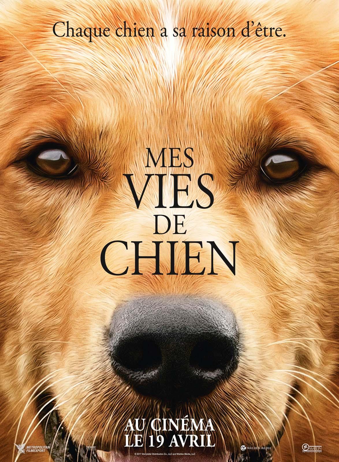 Mes vies de chien Français HDRiP