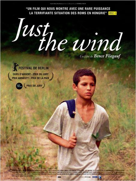 Just the Wind [DVDRiP] [MULTI]