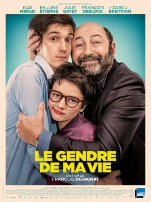 Le Gendre De Ma Vie Critique : gendre, critique, Achat, Gendre, AlloCiné
