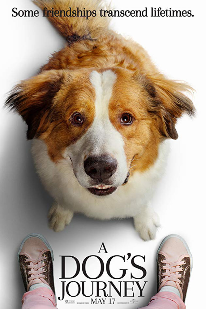 Mes Autres Vies De Chien Bande Annonce Vf : autres, chien, bande, annonce, Affiche, Autres, Chien, Photo, AlloCiné