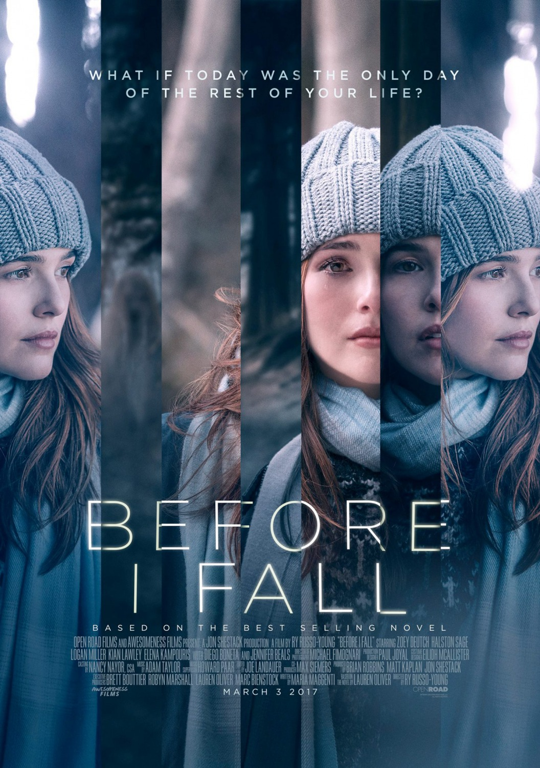 Before I Fall Français BRRiP