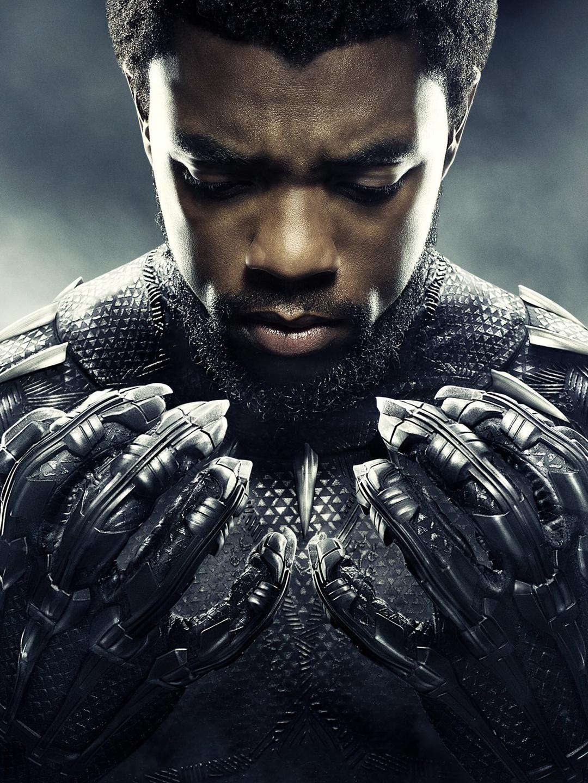 Black Panther Vostfr Streaming : black, panther, vostfr, streaming, Black, Panther, AlloCiné