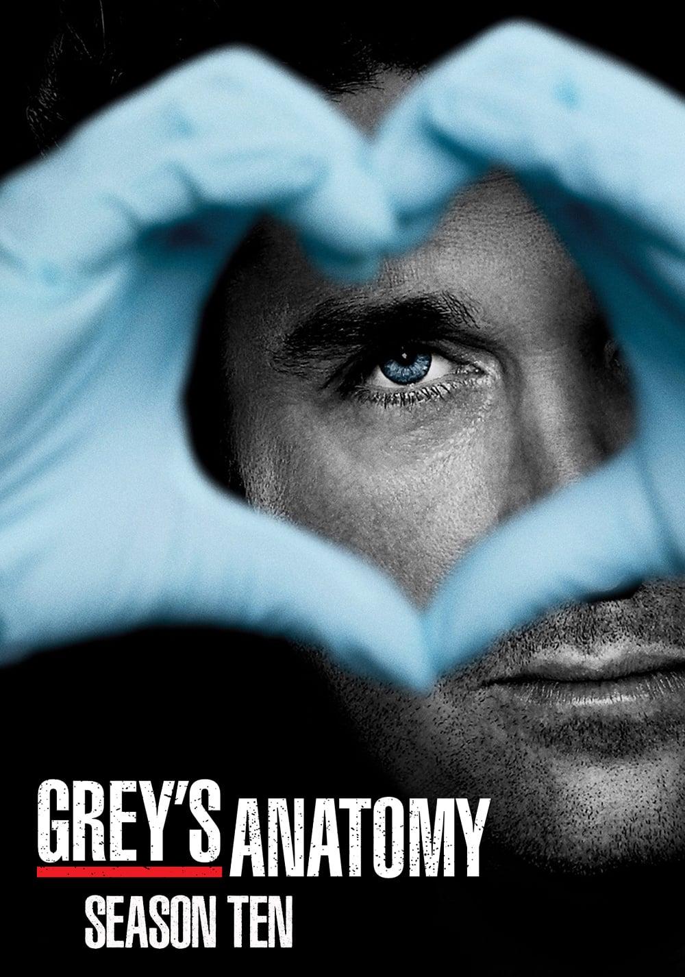 Greys Anatomy Saison 10 : greys, anatomy, saison, Grey's, Anatomy, Saison, AlloCiné