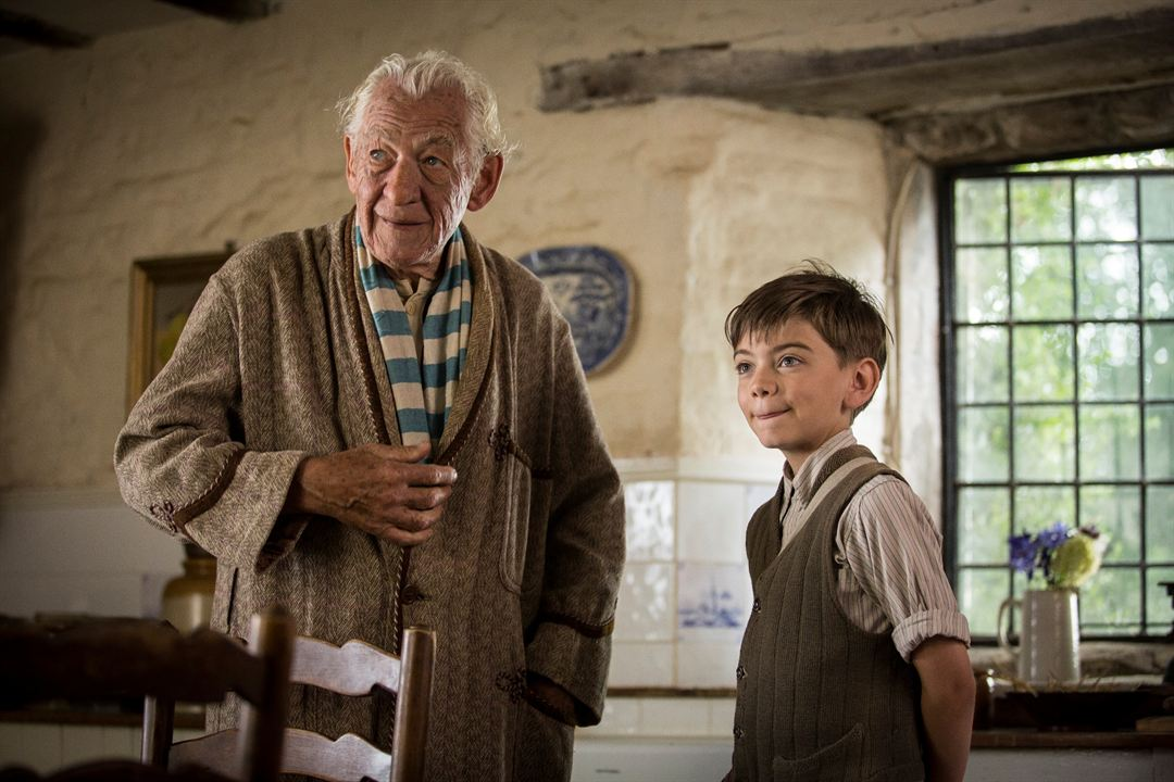 Mr. Holmes : Photo Ian McKellen, Milo Parker