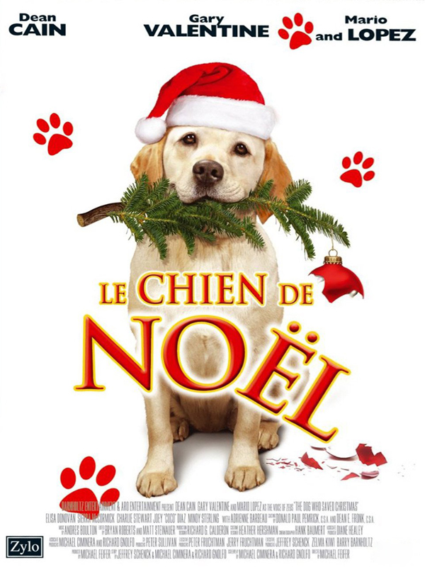 Un Noel Qui A Du Chien : chien, Achat, Chien, Sauvé, Noël, AlloCiné