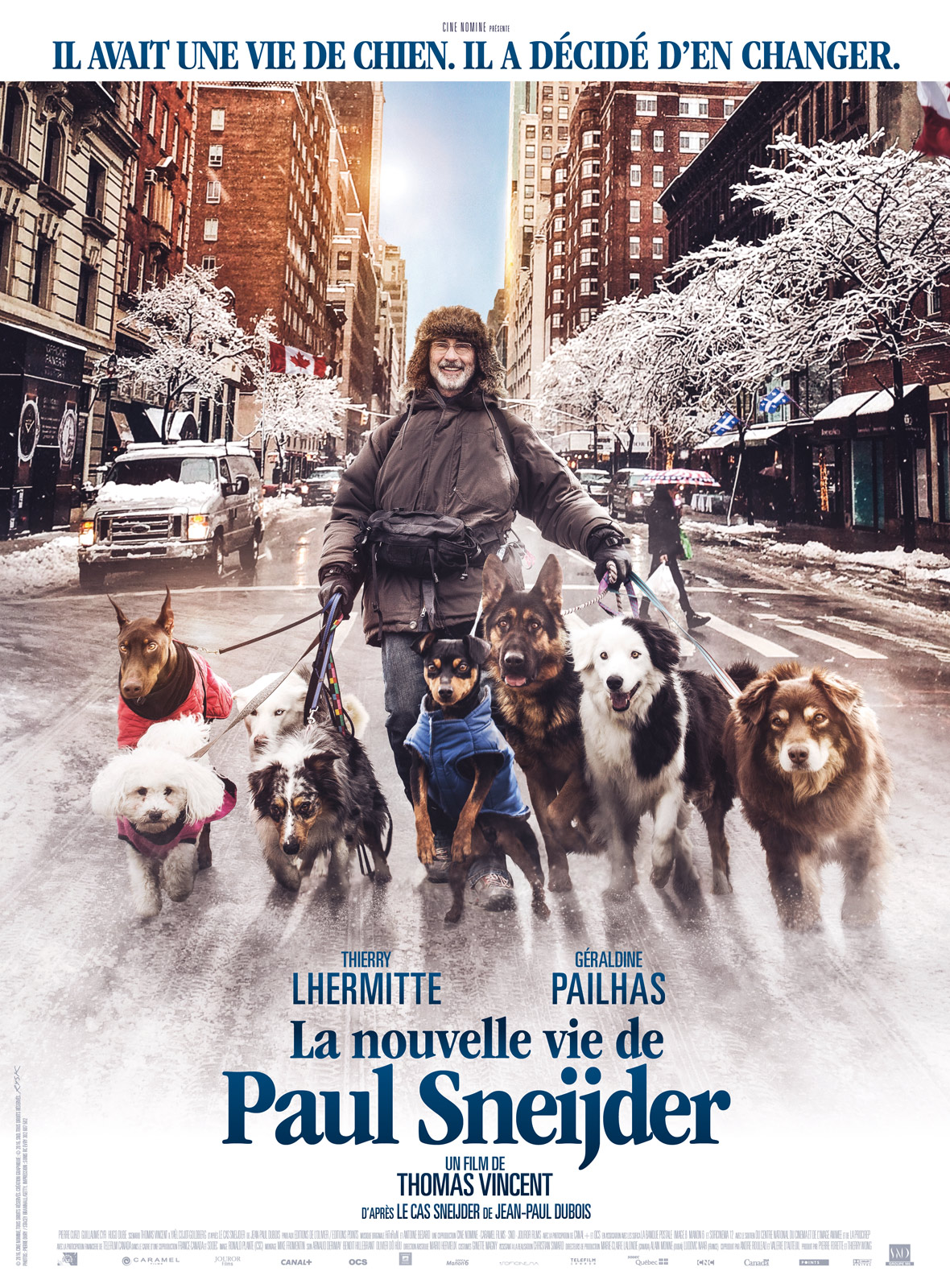 La Nouvelle vie de Paul Sneijder Français BDRiP