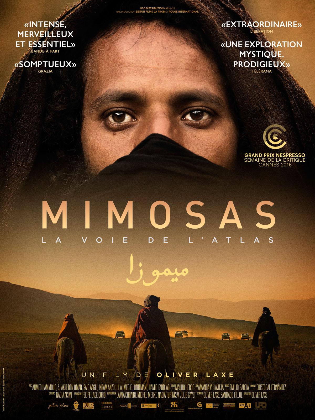 Résultats de recherche d'images pour «Mimosas, la voie de l'Atlas allocine»