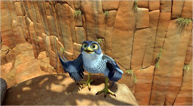 Drôles D'oiseaux : Photo