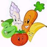 vegetabearians