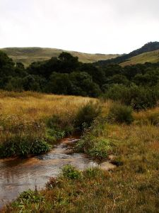 river above-grey-mares-tail-falls