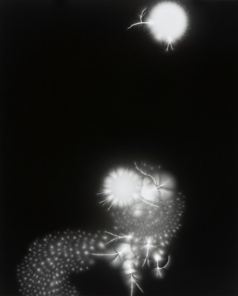 Black-and-white photograph of round bursts of white light on a black background