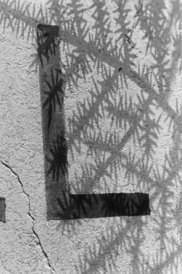 Black and white photograph of a detail of a hand painted sign of the letter 'L' painted onto a wall, shadow of some leaves
