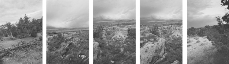 Five vertical black-and-white photographs of a valley with shrubs and a downed tree and an overcast sky.