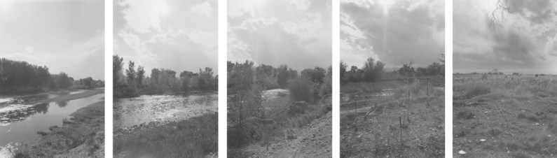Five vertical black-and-white photographs of a grassy riverbank with trees and an overcast sky.