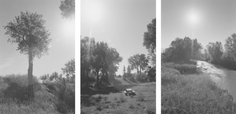 Three black-and-white photographs with trees, a picnic table, and figures next to a pond with a brightly lit sky.
