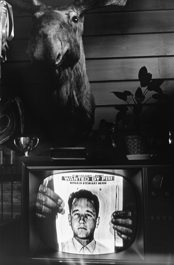 Black-and-white photograph of a television with an FBI wanted poster on screen and a taxidermy moose head on the wall in the background