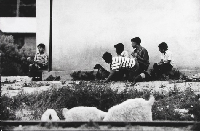 Black-and-white photograph of a group of four boys and a dog looking at another boy sitting at the corner of a building