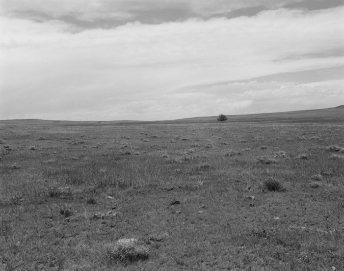 A black and white photograph of an expansive field with a single tree in the distance and an overcast sky.