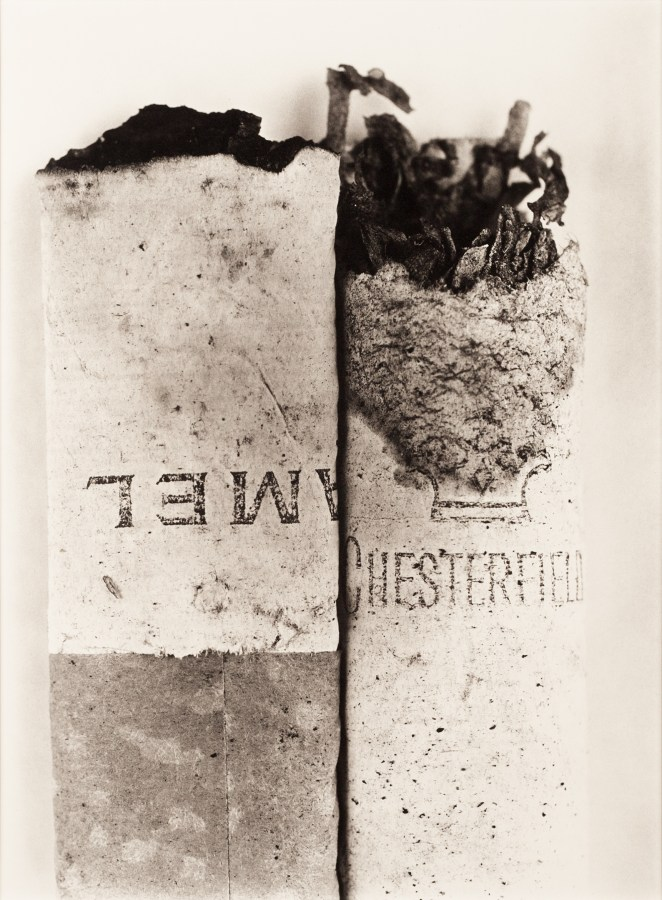 Black and white photograph of two burnt cigarette ends lying side by side